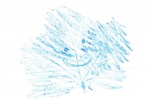 Happy leaf drawing